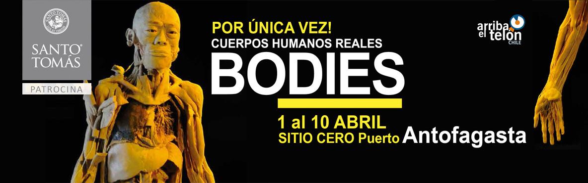 Exposición: Bodies, cuerpos humanos reales