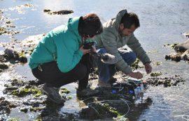Toma de muestras en Humedal Bahía Lomas