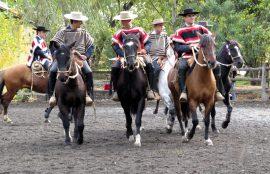 Foto Rodeo de la Amistad, año 2015.