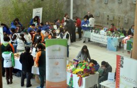 Feria de Autogestion y Emprendimiento Inclusivo 13