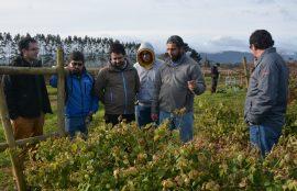 Estudiantes integrantes del Laboratorio de Innovación Aplicada del Área Informática Santo Tomás en terreno apoyando proyectos de agricultura en Cañete.