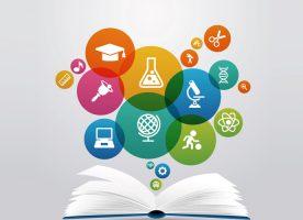 universidad investigacion docencia