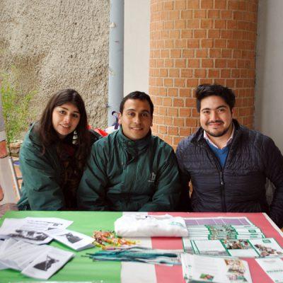 Galeria Feria T en Trabajo Social Vina 1