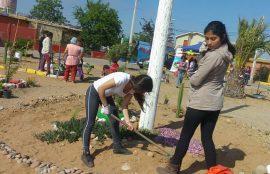 Dos alumnas confeccionan una jardinera en el suelo.