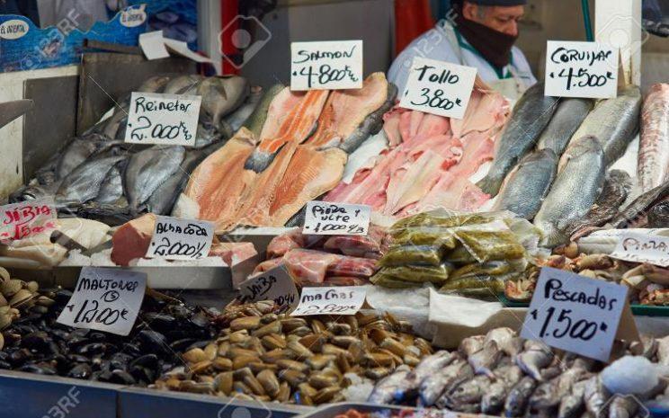 Cuidados consumo mariscos y pescados