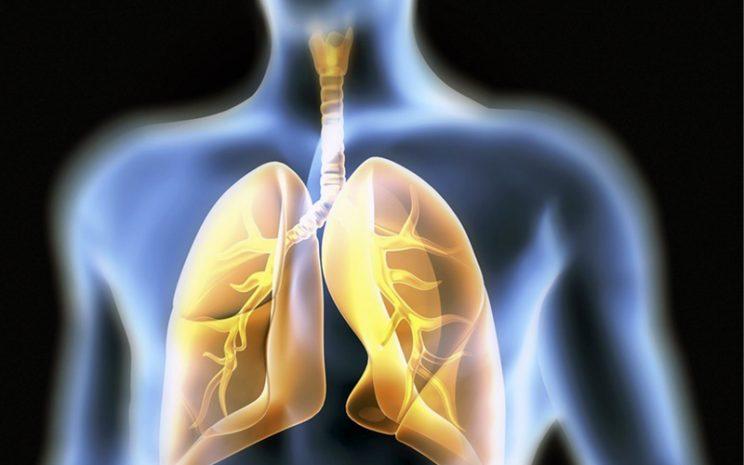 columna enfermedades respiratorias