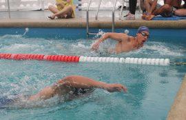 Compétencia de natación.