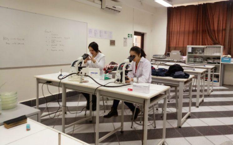 Investigación alumnos de Bachillerato en Ciencias UST Osorno