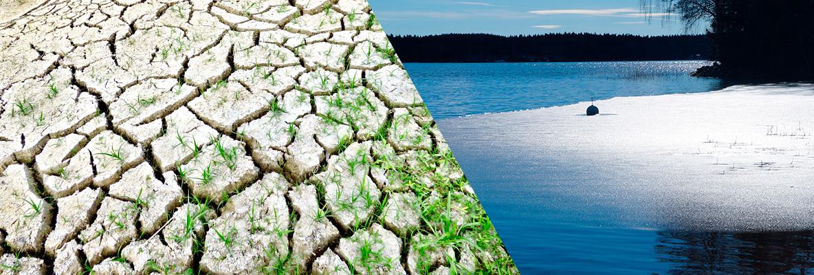 curso cambio climático