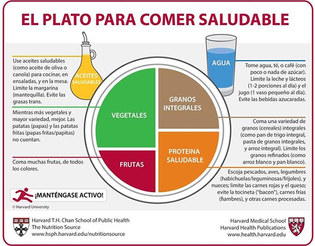 Plato alimentario.