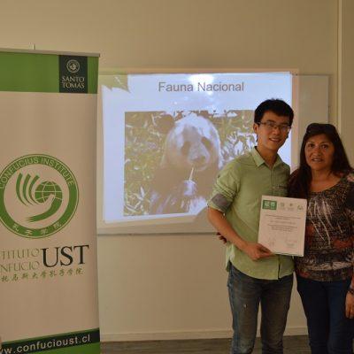 curso introductorio de Chino Mandarín