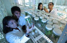 Cuatro estudiantes en laboratorio. Una de ellas levanta un frasco que contiene una planta dentro.
