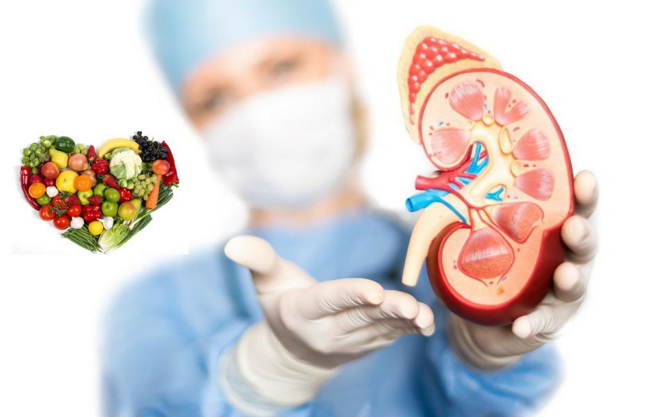 Nutrición y enfermedad renal
