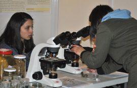 El concurso tiene como objetivo principal facilitar el encuentro de estudiantes, profesores y científicos en torno a temáticas investigativas.