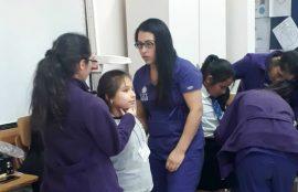 Proyecto Escuelas Saludables