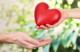 Amor y Afecto