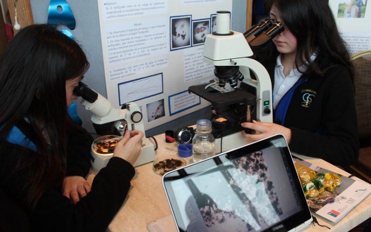 Los asistentes pudieron conocer diversas exposiciones de iniciativas y proyectos durante los dos días que duró el evento.