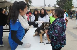 Operativo para mascotas -Mechoneo Solidario