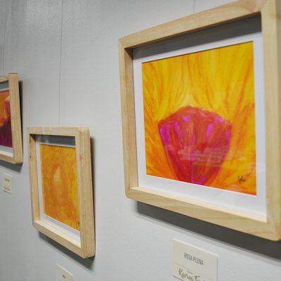 Exposición - Karina Fredes -Santo Tomás Viña del Mar