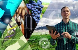 seminario agroindustrial