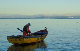 Salida-de-Pescador-a-la-Mar-Genesis-Peso-850x638